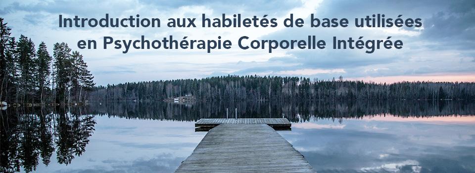 Introduction aux habiletés de base utilisées en Psychothérapie Corporelle Intégrée (PCI)